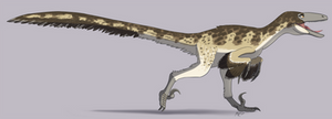 Dinovember # 4 - Deinonychus