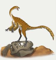 Dinovember # - 6 Gallimimus by MightyRaptor