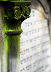 Jewish Cemetery - Warsaw 10 by remigiuszScout