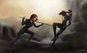 Catwoman VS Black Widow by slamko42