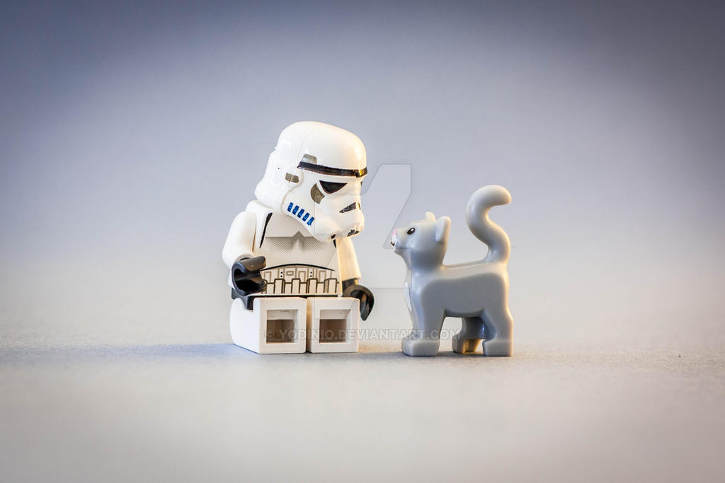 the trooper and the cat by Yodinio