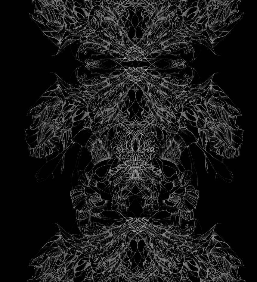 invert drawing by Lisha711