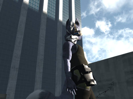Rooftop Wolf