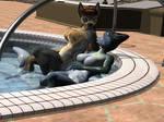 Poolside (Closeup Shot) by imago3d