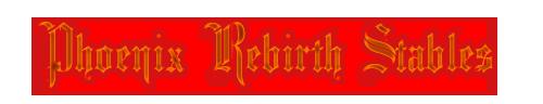 Phoenix Rebirth Stables Banner by RileyCasper