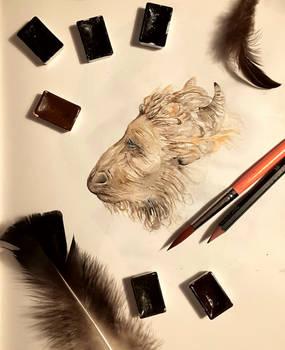 Minotaur Sketch