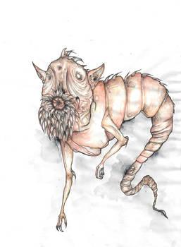 Bestiary: Alp-luachra