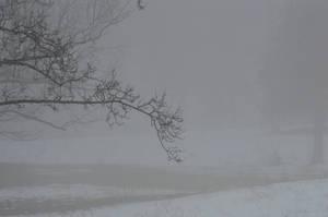 Winter3 by RAYNExstorm