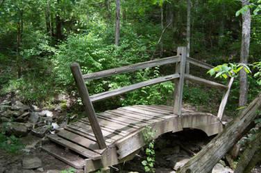Forest Bridge by RAYNExstorm