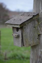 Old Bird House by RAYNExstorm