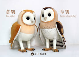 Barn Owl and Grass Owl plush