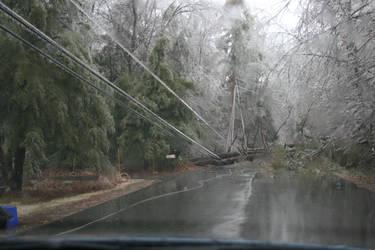 Ice Storm Damage by Lestatslee