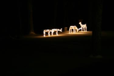 Night Lights 3 by Lestatslee