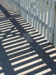 Shadow Lines 1