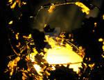 Cauldron of Gold II