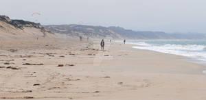 Dead of the Beach