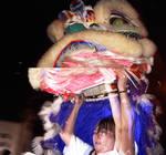 Lion Dancer 2