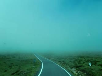 Mist by beforethenight