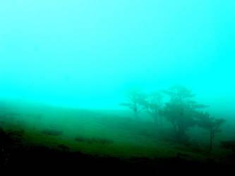 Mist, again. by beforethenight