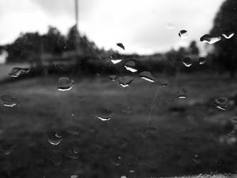 Rain. by beforethenight