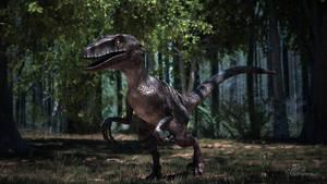 3D Raptor scene by Kadamx