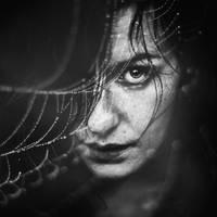 La metamorphose d Arachne by Julieoftheworldtree