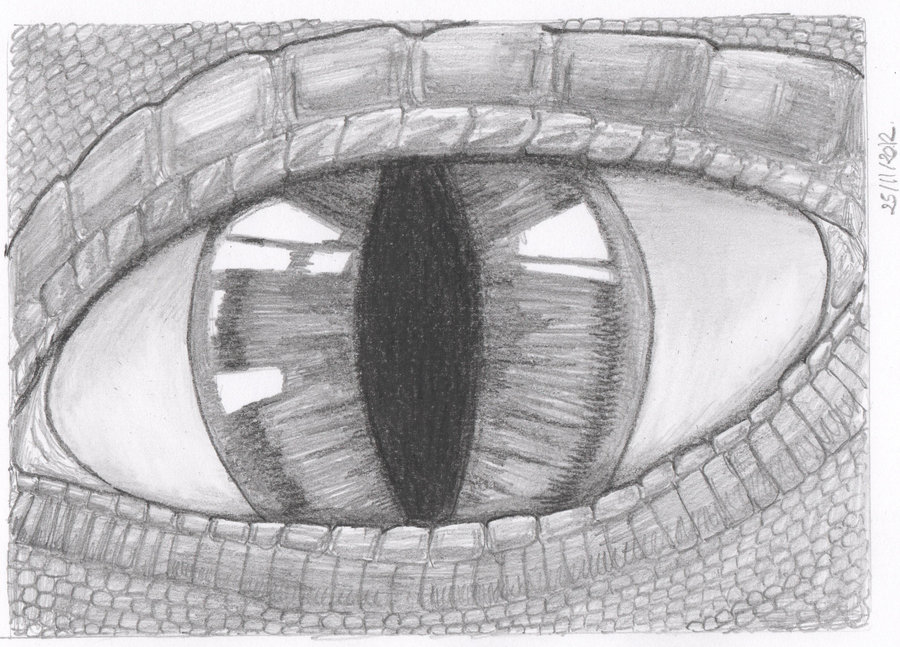 Dragon eyes by epictilly24
