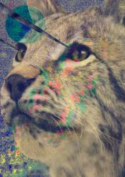 Lynxy by Spaceninja093