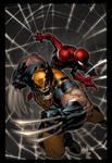 Wolverine and Spider-Man