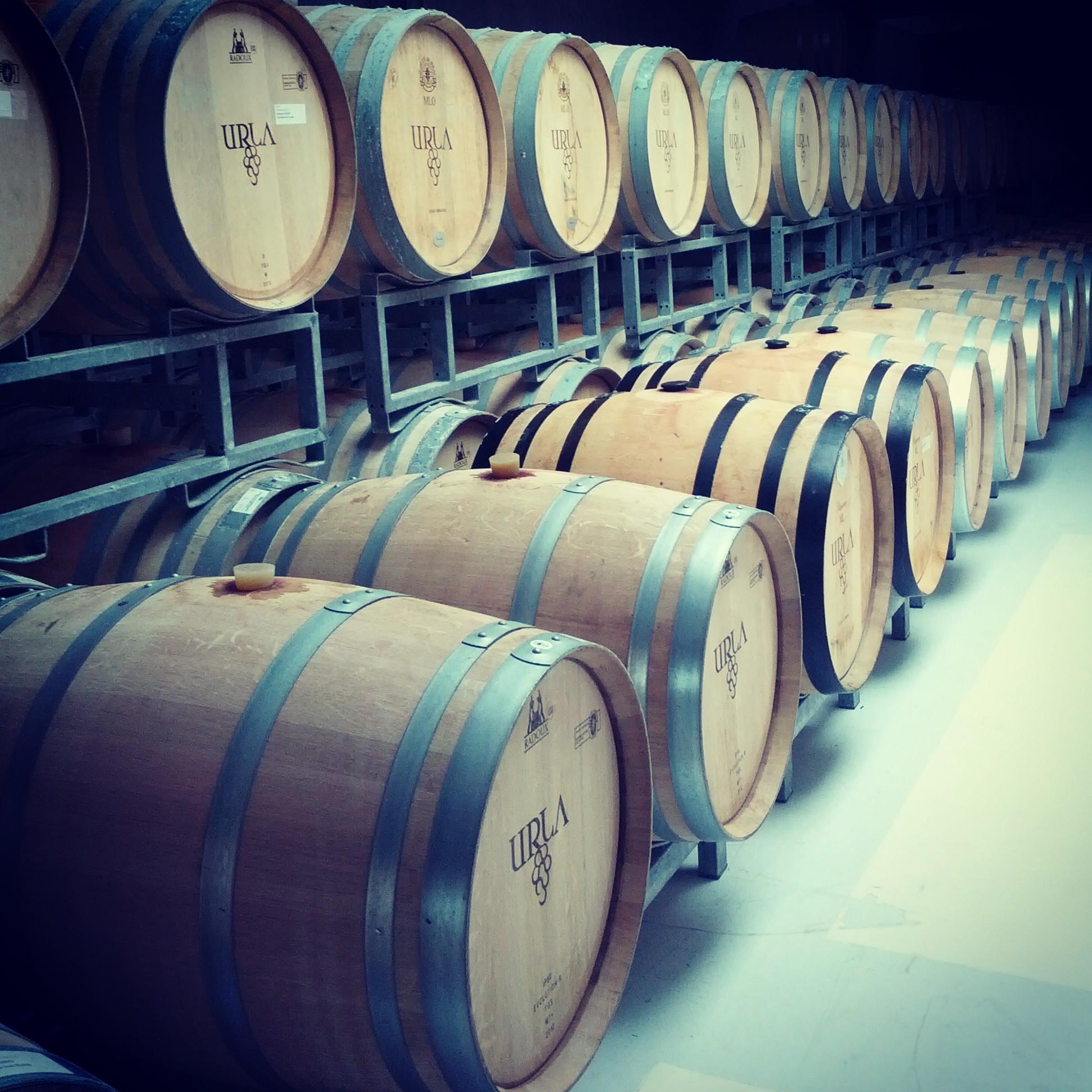 Wine Barrels by spookytr
