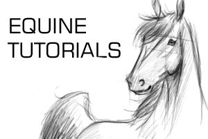 Equine tutorials ID by equine-tutorials
