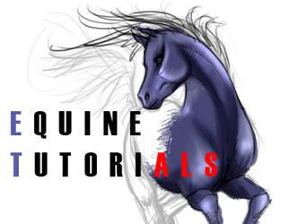 Equine-Tutorials ID 2 by equine-tutorials