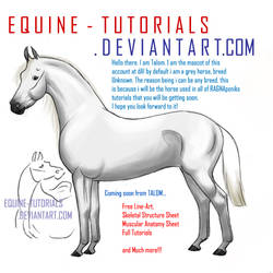 Another ID : Talom by equine-tutorials