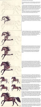 Colouring Horses - LindaColijn by equine-tutorials