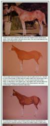 Strawberry Roan - JNFerrigno by equine-tutorials