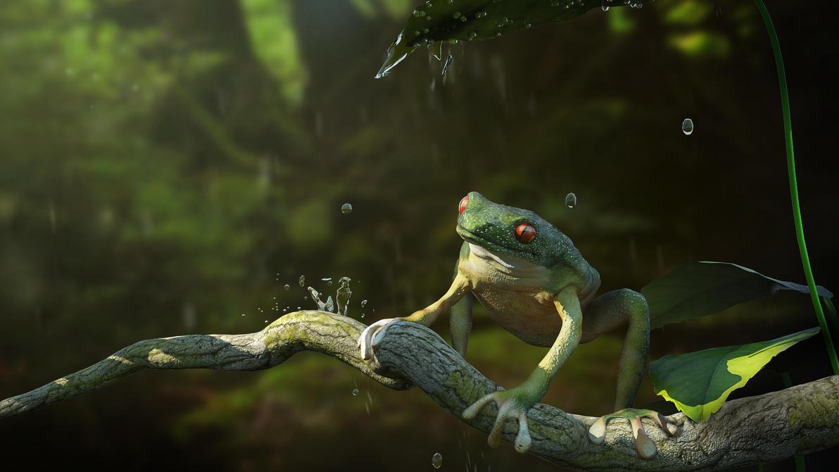 Frog by pavolsvk