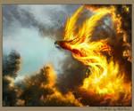 FireWings