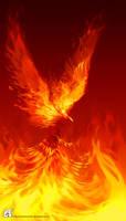 Phoenix commission