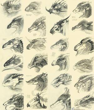 patterns by WhiteRaven90