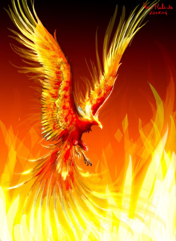 Sketch of a phoenix by WhiteRaven90