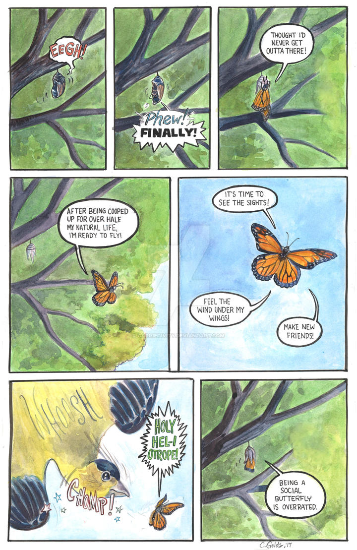 Social Butterfly by Carrietivity