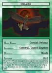 Cryptid Quest Card: Owlman