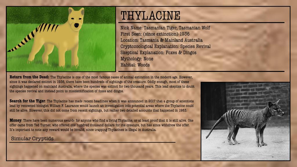 Cryptid Month: Thylacine by McDonaldbros on DeviantArt