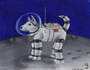 Husky on the moon