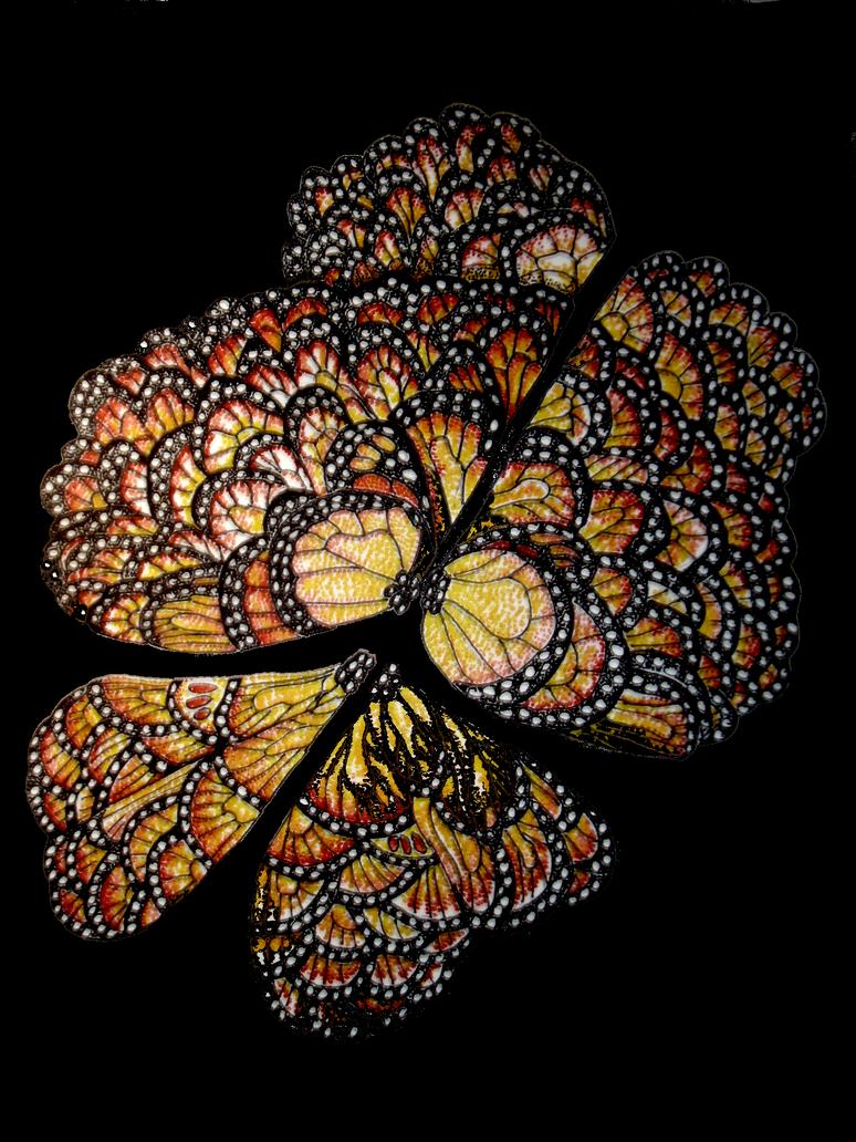 A Kaleidoscope of Butterflies by themasterofnone