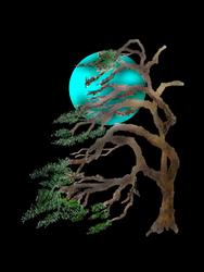 Wind Blown Pine Tree. by themasterofnone