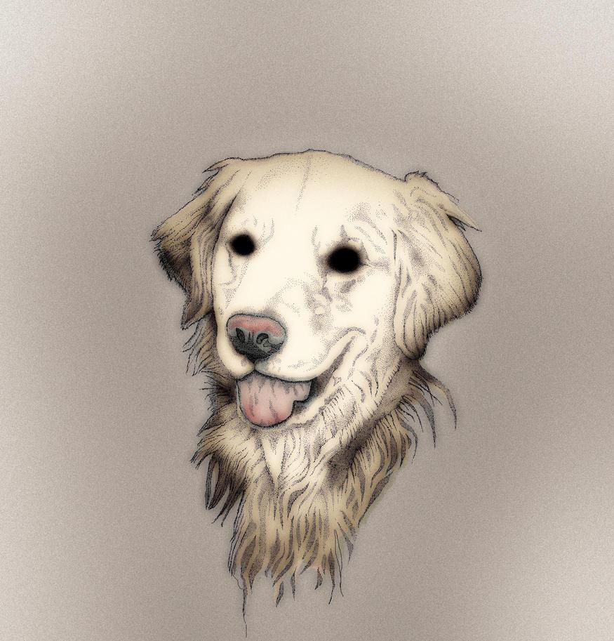 Zac the Dog by themasterofnone