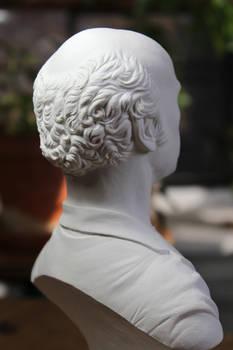 Larry David classical bust (hair detail)
