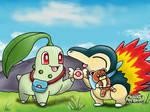 Pokemon Mystery Dungeon Fan art