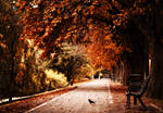 The October Road